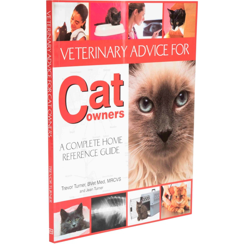 Veterinary Advice For Cat Owners