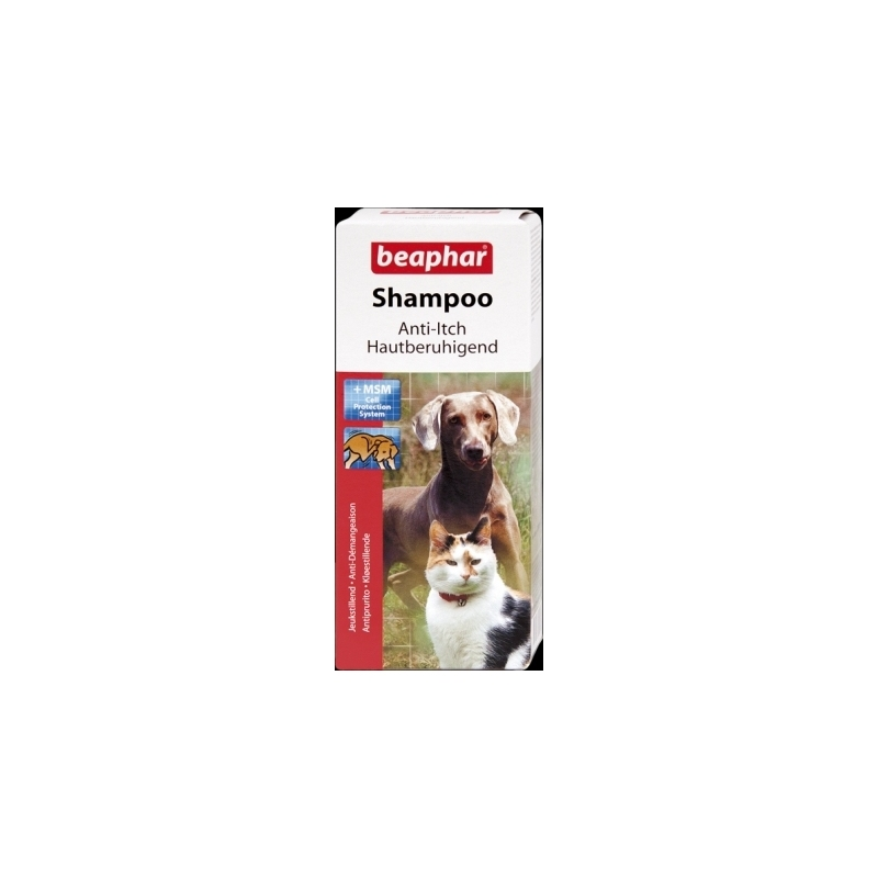 Anti Itch Shampoo