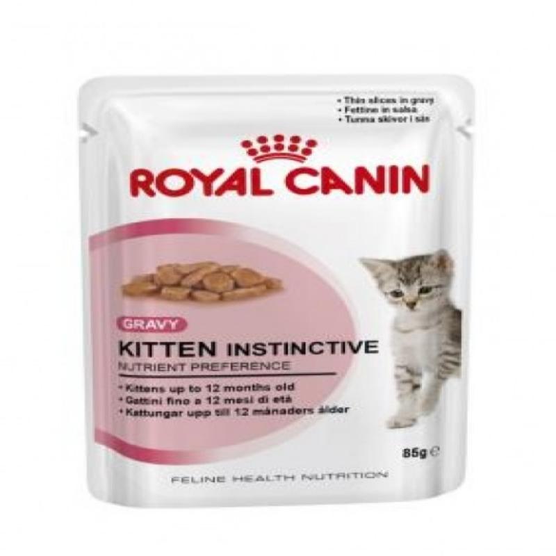 Kitten Instinctive