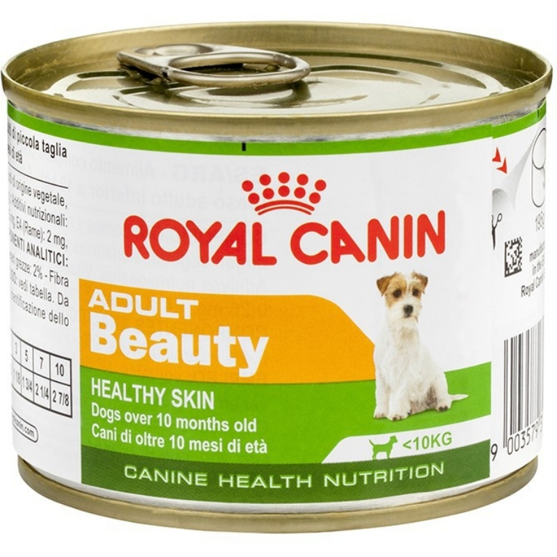 CHN Adult Beauty Wet Dog Can
