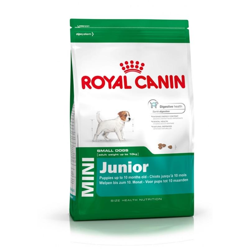 Mini Junior