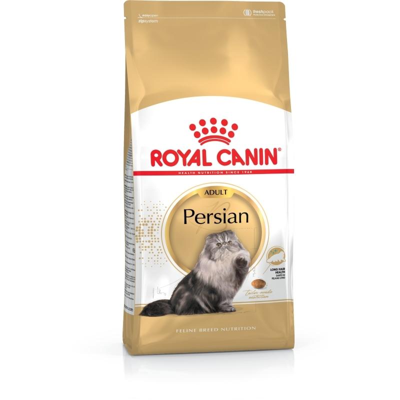 Persian Adult
