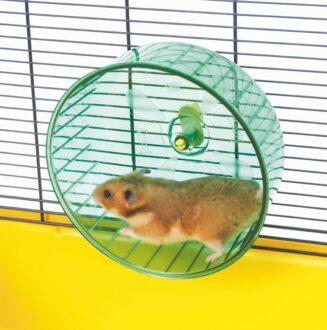 Rolly Jumbo Exercise Wheel