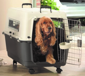 Andes Pet Carrier