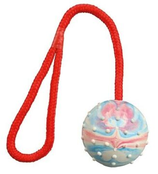 Trixie-Ball on a Rope