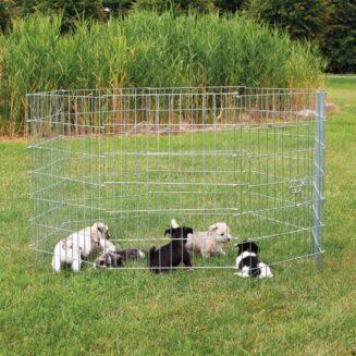 Natura puppy run, galvanized