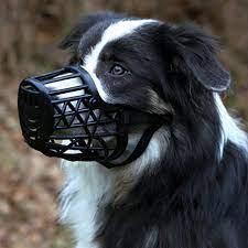 Trixie Dog Muzzle, Plastic, Black