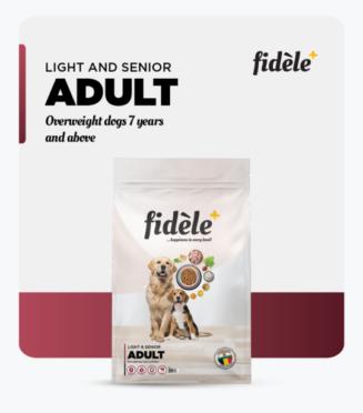 Fidele- Light and Senior Adult