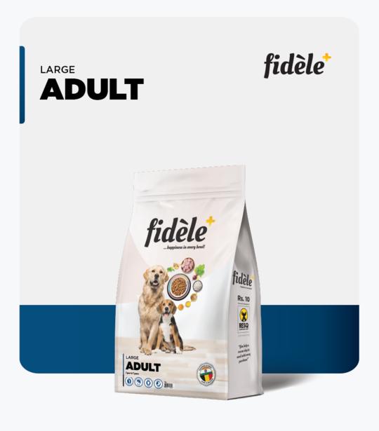 Fidele- Large Adult